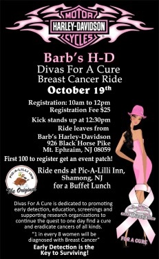 2013 Barb's H-D Divas For A Cure Breast Cancer Ride